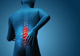 chiropractic 1