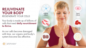 rejuventate your body and regenerate your cells with Laminine